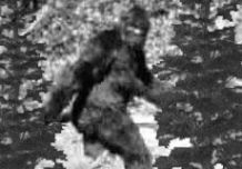 Bigfoot Encounter, a Mystery Party for Kids